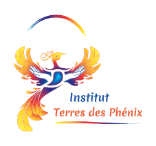 institut formation reflexologie plantaire coul